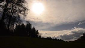Surowa burza na zewnątrz drewna zbiory wideo