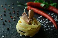 Surowa fettuccine pasta z czosnków cloves, chili pieprzami, świeżymi cilantro gałąź, prostacką morze solą i peppercorns, zdjęcie stock