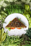Surowa karmowa kanapka Obrazy Royalty Free