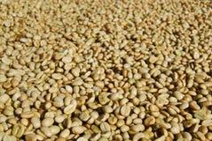 Surowa kawa Obrazy Stock