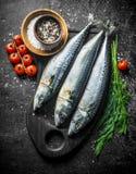 Surowa makrela na tnącej desce z koperem, pikantność i pomidorami, zdjęcia royalty free