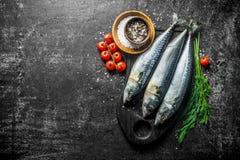 Surowa makrela na tnącej desce z koperem, pikantność i pomidorami, obraz stock
