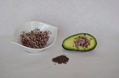 Surowa purpurowa kapusta kiełkuje z avocado zdjęcie royalty free