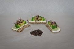 Surowa purpurowa kapusta kiełkuje z avocado i serem zdjęcie stock