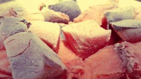 Surowa ryba i mięsa Zdjęcia Stock