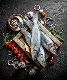 Surowa ryba na drewnianej tacy z pomidorami, pikantność, czosnkiem, rozmarynami i cebulkowymi pierścionkami, obraz royalty free