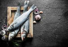 Surowa ryba na tacy z czosnkiem, pikantność i cebulkowymi pierścionkami, obrazy royalty free