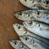Surowa ryba nad naturalnym drewnianym tłem (scad) Fotografia Royalty Free