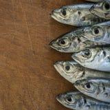 Surowa ryba nad naturalnym drewnianym tłem (scad) Zdjęcia Royalty Free