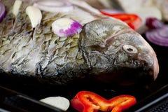Surowa ryba z cebuli i pieprzu plasterkami obraz stock