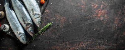 Surowa ryba z pikantność i czereśniowymi pomidorami obraz stock