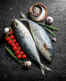 Surowa ryba z pikantność, rozmarynów i czosnku cloves, zdjęcie stock