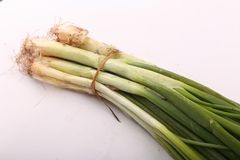Surowa zielona cebula zdjęcie stock