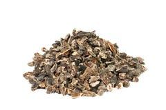 Surowe Cacao stalówki Zdjęcie Stock