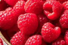 Surowe Czerwone Organicznie malinki fotografia stock