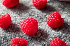 Surowe Czerwone Organicznie malinki obraz stock