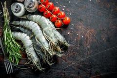 Surowe garnele z rozmarynami, pomidorami i pikantność, zdjęcia royalty free