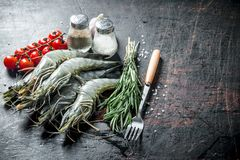 Surowe garnele z rozmarynami, pomidorami i pikantność, zdjęcia stock