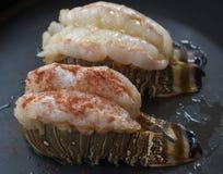 surowe homara reszka Obrazy Royalty Free