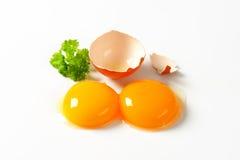 surowe jajko żółtko Obraz Royalty Free