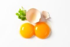 surowe jajko żółtko Fotografia Royalty Free
