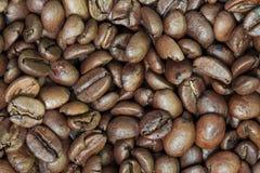 Surowe kawowe fasole Zdjęcia Royalty Free