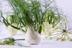 Surowe koper żarówki z zielenią wywodzą się i liście, koperów kwiaty i korzeniowy przygotowywający kucharz, Obrazy Stock