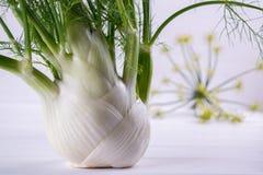 Surowe koper żarówki z zielenią wywodzą się i liście, koperów kwiaty i korzeniowy przygotowywający kucharz, Zdjęcie Royalty Free