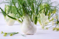 Surowe koper żarówki z zielenią wywodzą się i liście, koperów kwiaty i korzeniowy przygotowywający kucharz, Obraz Royalty Free