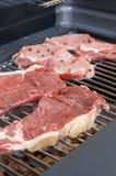 surowe mięso zdjęcie royalty free