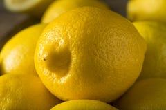 Surowe Organicznie Żółte cytryny Obraz Stock