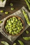Surowe Organicznie Świeże Zielone Fava fasole zdjęcie royalty free
