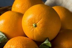 Surowe Organicznie Car pomarańcze obrazy royalty free