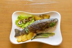 Surowej ryba tęczy pstrąg z cytryną i zielenie na bielu talerzu Obraz Royalty Free