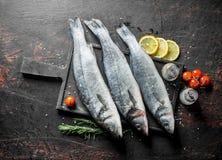 Surowej ryby denny bas z cytryną, rozmarynami i pikantność, obraz royalty free