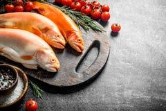 Surowej ryby pstrąg na tnącej desce z rozmarynami, pikantność i pomidorami, zdjęcia stock