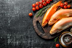 Surowej ryby pstrąg na tnącej desce z rozmarynami, pikantność i pomidorami, zdjęcie stock