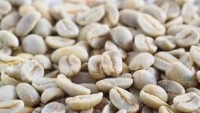 Surowej zielonej kawy spada zwolnione tempo zdjęcie wideo