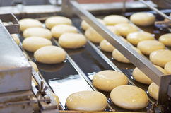 Surowi Donuts Na konwejerze Obrazy Royalty Free