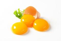 Surowi jajeczni yolks Obrazy Royalty Free