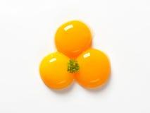 Surowi jajeczni yolks Zdjęcie Royalty Free