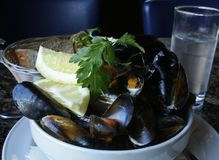 Surowi Mussels w pucharze z cytryną i pietruszką Obrazy Royalty Free