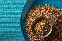 Surowi, nieprzerobeni musztardy ziarna nasiona w metal miarce na błękitnych śliwkach, Obraz Stock