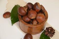 Surowi Organicznie Brown kasztany w pucharze Obrazy Royalty Free