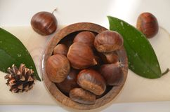 Surowi Organicznie Brown kasztany w pucharze Obraz Royalty Free
