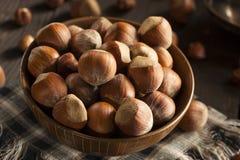 Surowi Organicznie Cali Hazelnuts Fotografia Stock