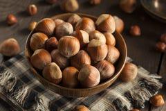 Surowi Organicznie Cali Hazelnuts Fotografia Royalty Free
