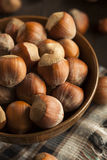Surowi Organicznie Cali Hazelnuts Zdjęcie Royalty Free