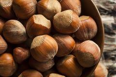 Surowi Organicznie Cali Hazelnuts Zdjęcia Stock