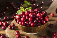 Surowi Organicznie Czerwoni Cranberries Zdjęcia Stock